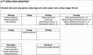 assistenternas aktivitetsschema